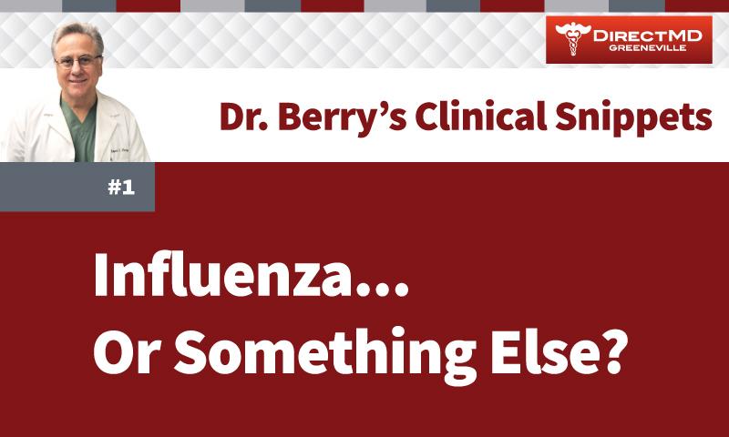 Snippet 1: Influenza… or Something Else?